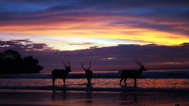 Indahnya Sunset di Pangandaran
